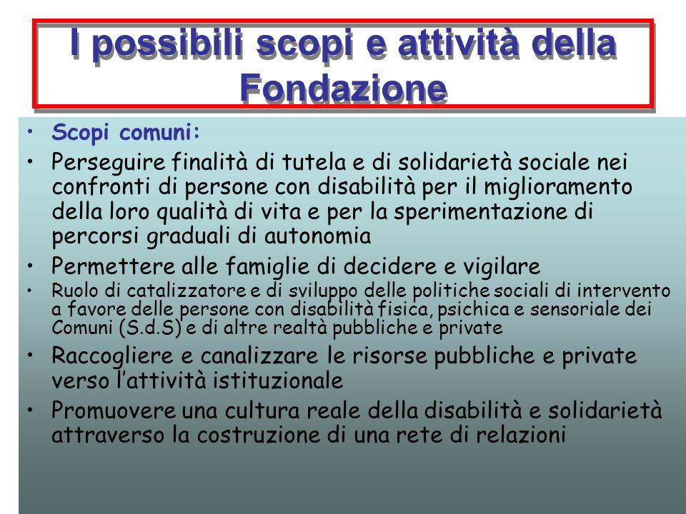 I possibili scopi e attività della Fondazione