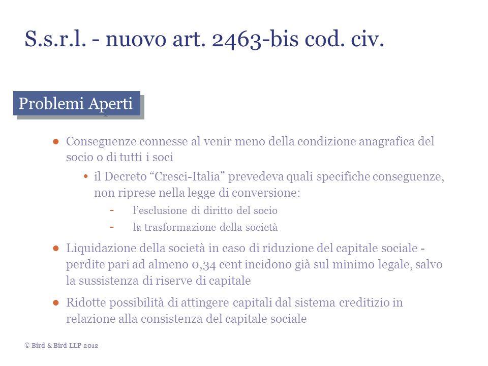 S.s.r.l. - nuovo art. 2463-bis cod. civ.