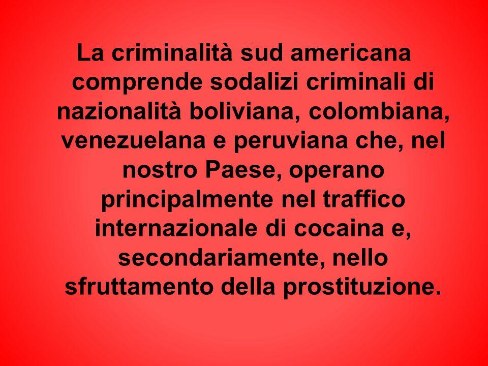 La criminalità sud americana comprende sodalizi criminali di nazionalità boliviana, colombiana, venezuelana e peruviana che, nel nostro Paese, operano principalmente nel traffico internazionale di cocaina e, secondariamente, nello sfruttamento della prostituzione.