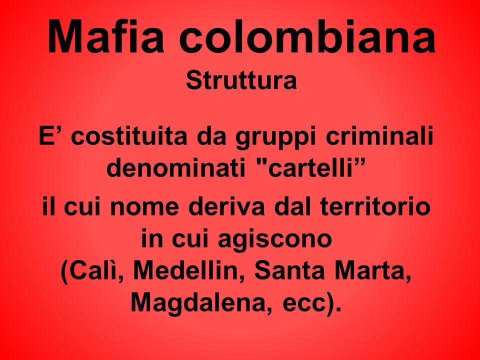 Mafia colombiana Struttura