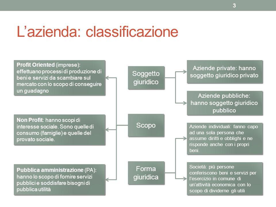 L'azienda: classificazione