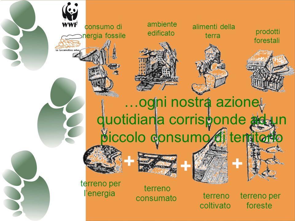consumo di energia fossile