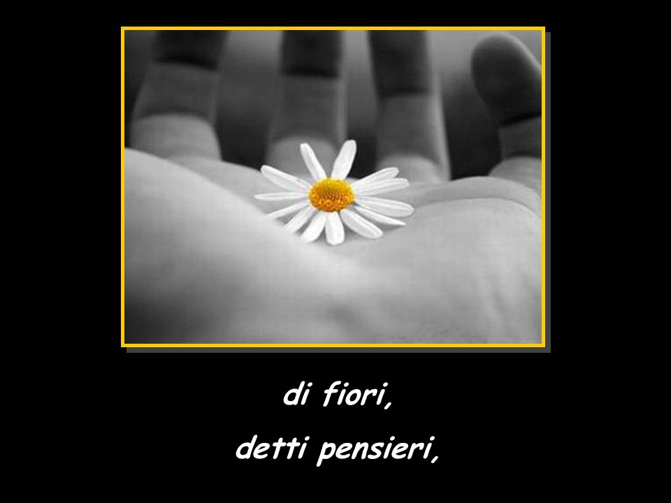 di fiori, detti pensieri,