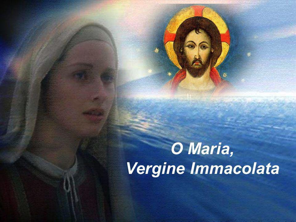 O Maria, Vergine Immacolata
