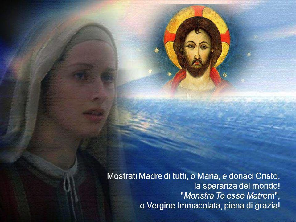 Mostrati Madre di tutti, o Maria, e donaci Cristo, la speranza del mondo.