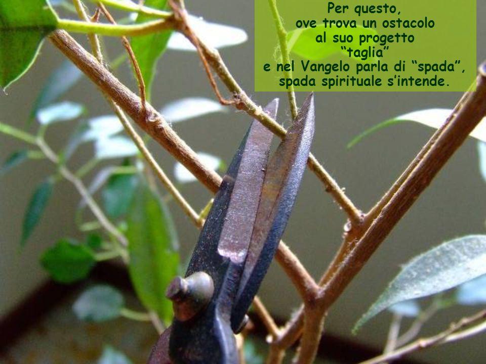 Per questo, ove trova un ostacolo al suo progetto taglia e nel Vangelo parla di spada , spada spirituale s'intende.