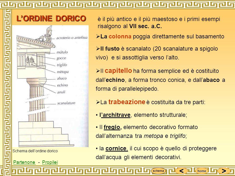 L'ORDINE DORICO è il più antico e il più maestoso e i primi esempi risalgono al VII sec. a.C. La colonna poggia direttamente sul basamento.