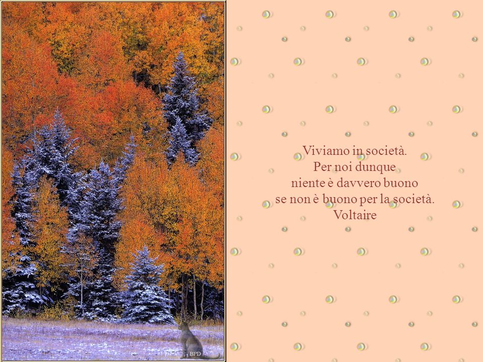 se non è buono per la società. Voltaire