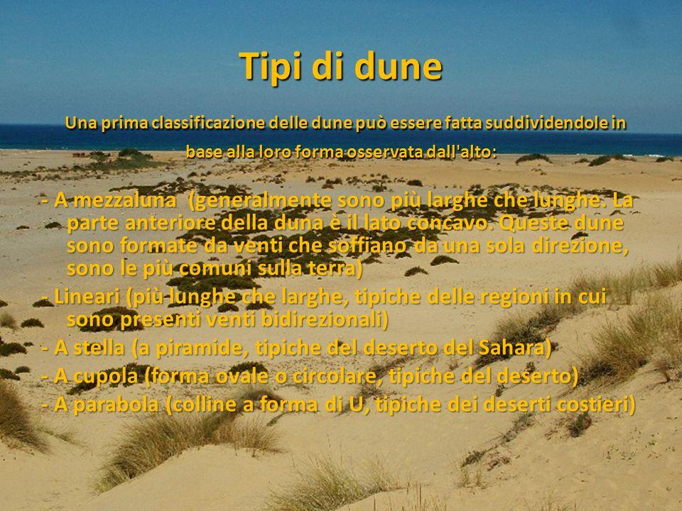 Tipi di dune Una prima classificazione delle dune può essere fatta suddividendole in base alla loro forma osservata dall alto:
