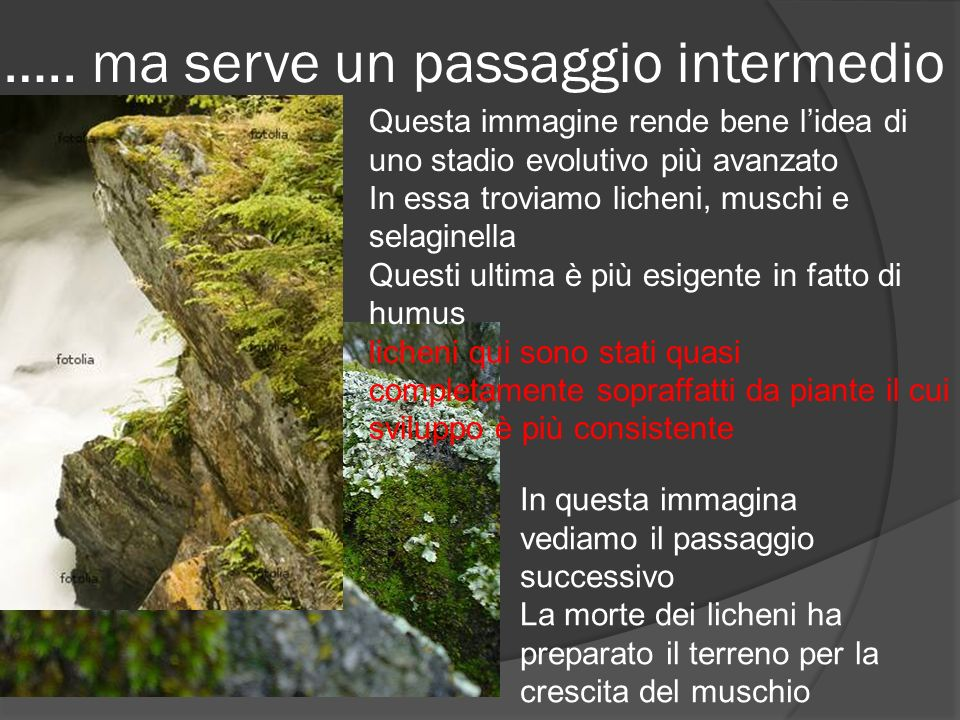 ….. ma serve un passaggio intermedio