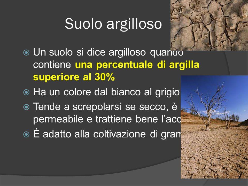Suolo argilloso Un suolo si dice argilloso quando contiene una percentuale di argilla superiore al 30%