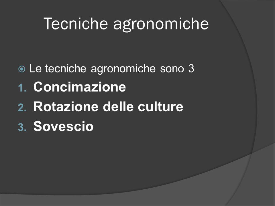 Tecniche agronomiche Concimazione Rotazione delle culture Sovescio