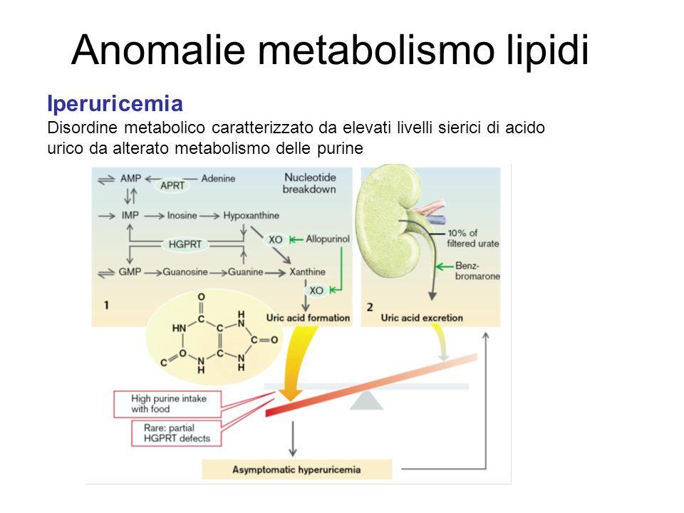 Anomalie metabolismo lipidi