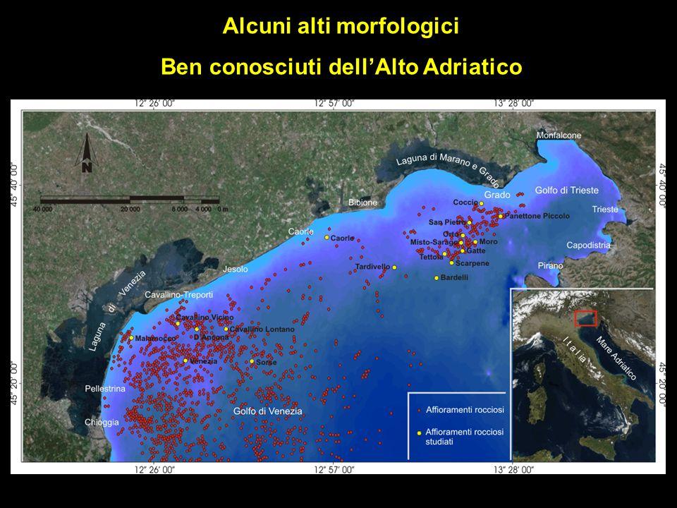 Alcuni alti morfologici Ben conosciuti dell'Alto Adriatico