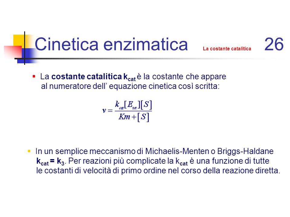 Cinetica enzimatica La costante catalitica 26