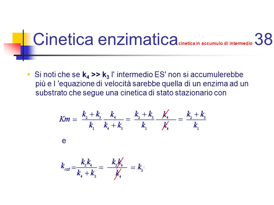 Cinetica enzimaticacinetica in accumulo di intermedio 38