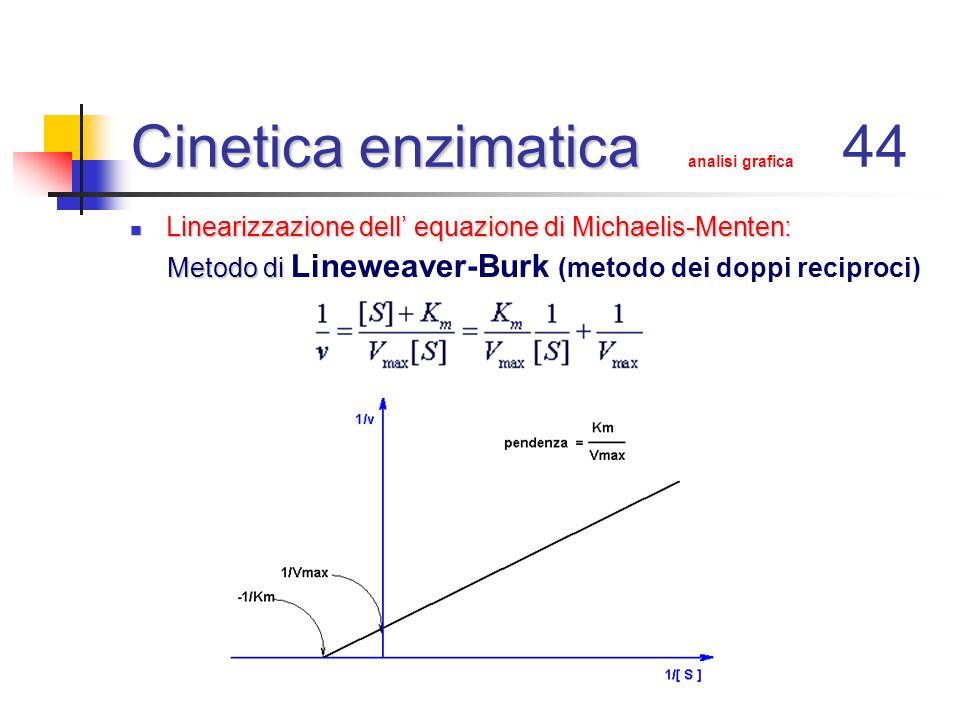 Cinetica enzimatica analisi grafica 44