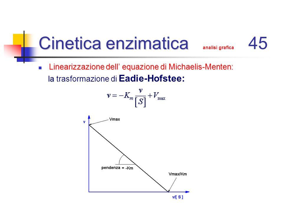 Cinetica enzimatica analisi grafica 45
