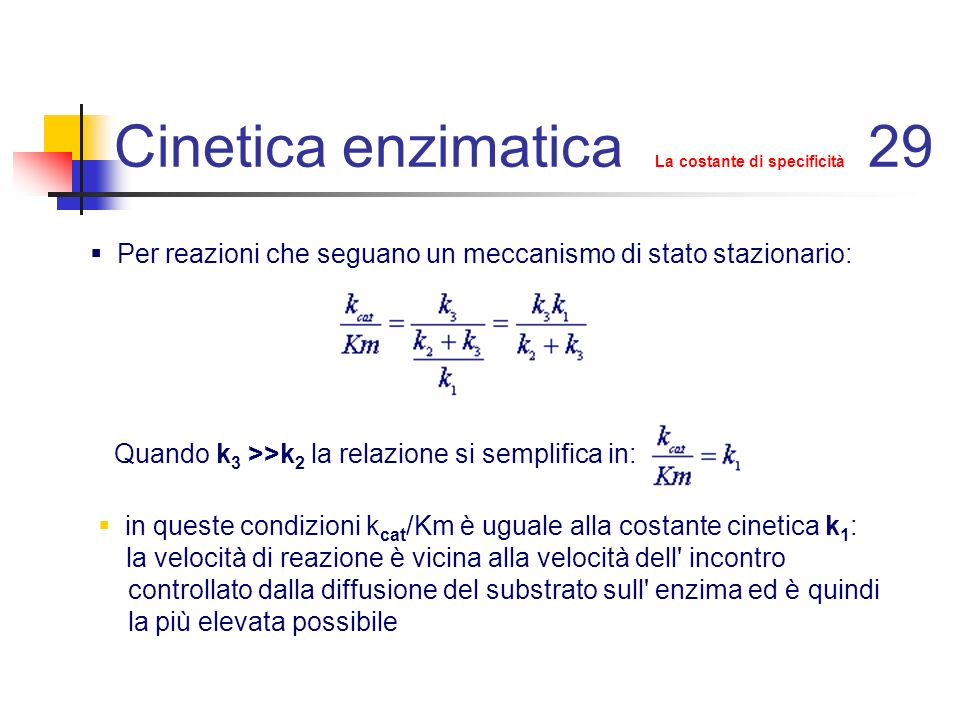 Cinetica enzimatica La costante di specificità 29