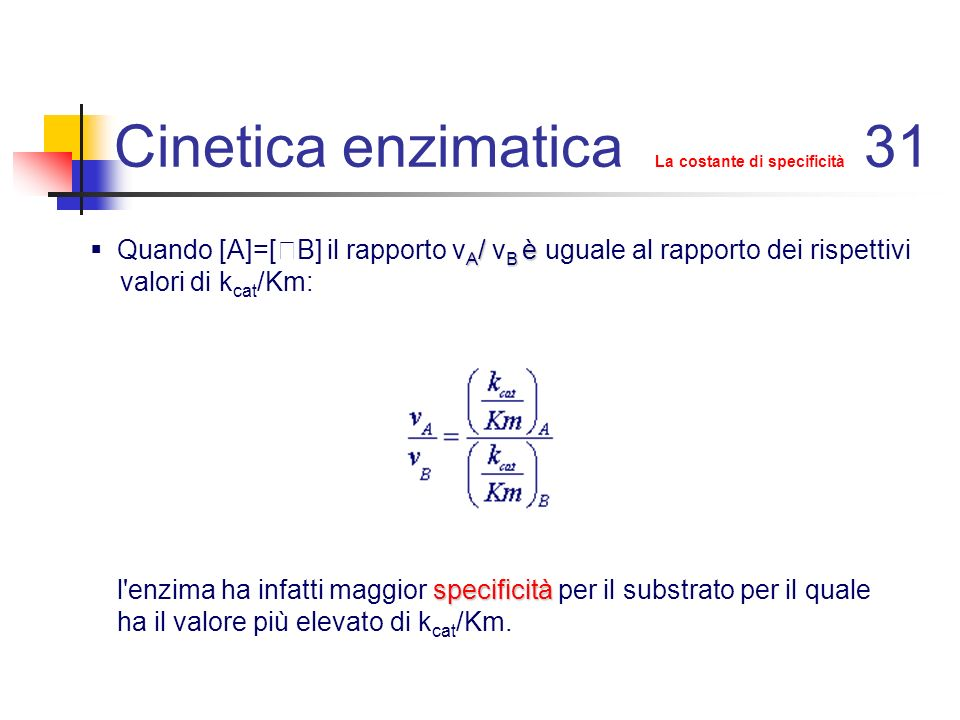 Cinetica enzimatica La costante di specificità 31