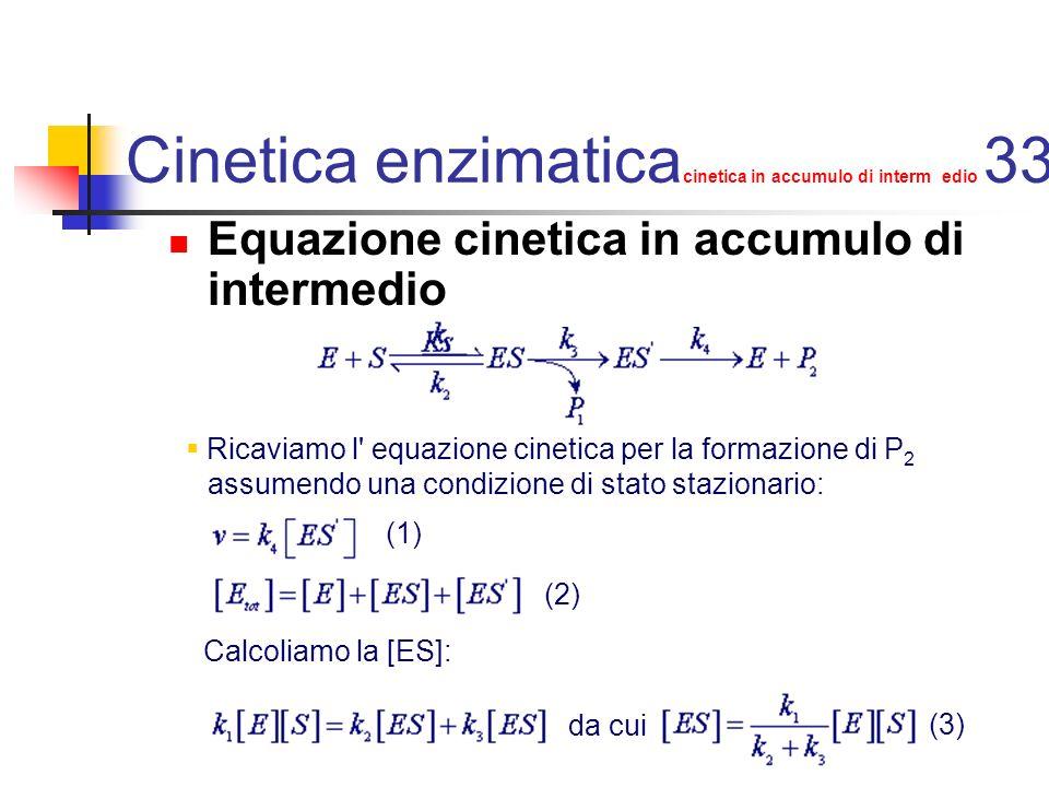 Cinetica enzimaticacinetica in accumulo di interm edio 33