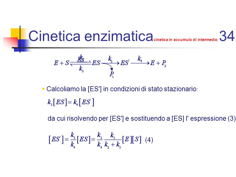 Cinetica enzimaticacinetica in accumulo di intermedio 34