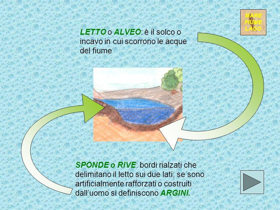 LETTO o ALVEO: è il solco o incavo in cui scorrono le acque del fiume