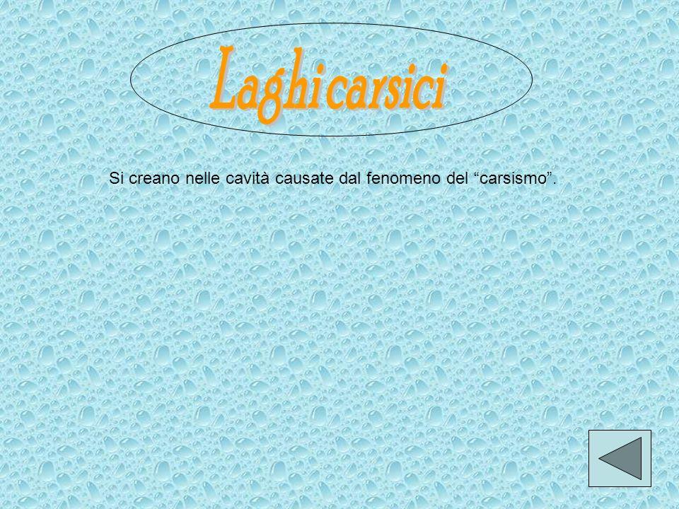 Laghi carsici Si creano nelle cavità causate dal fenomeno del carsismo .