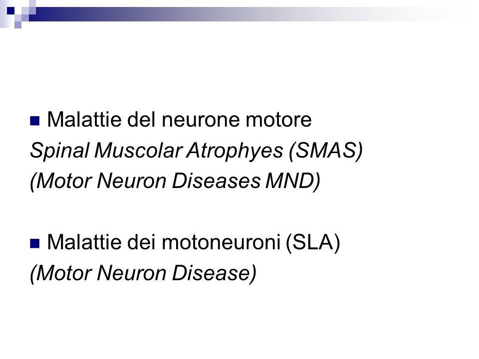 Malattie del neurone motore
