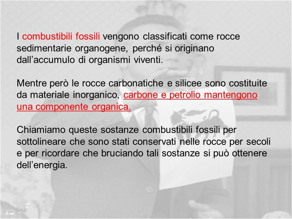 I combustibili fossili vengono classificati come rocce sedimentarie organogene, perché si originano dall'accumulo di organismi viventi.