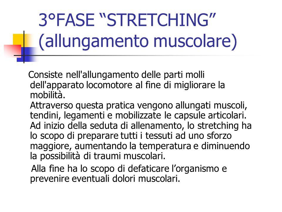 3°FASE STRETCHING (allungamento muscolare)
