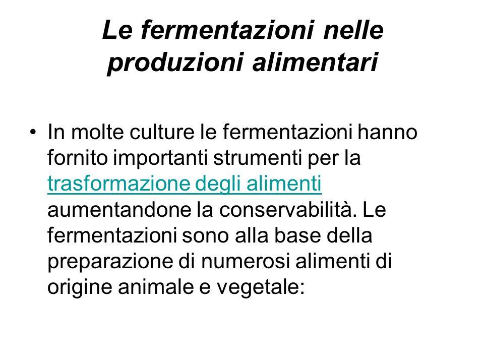 Le fermentazioni nelle produzioni alimentari