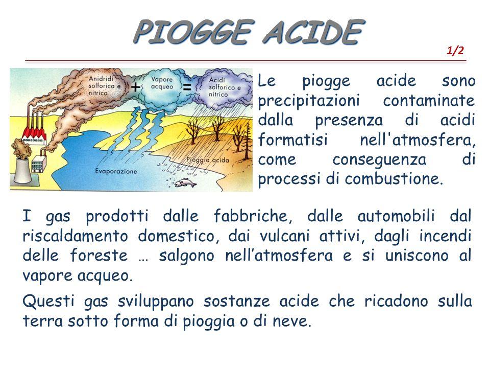PIOGGE ACIDE 1/2.