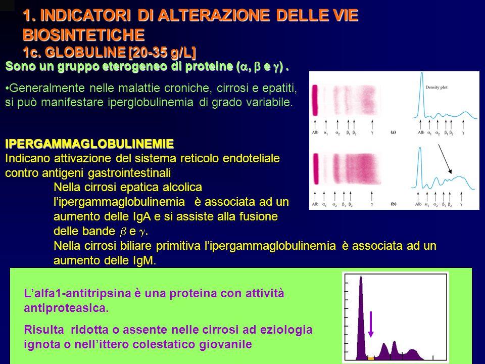 1. INDICATORI DI ALTERAZIONE DELLE VIE BIOSINTETICHE