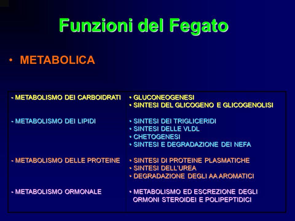 Funzioni del Fegato METABOLICA - METABOLISMO DEI CARBOIDRATI