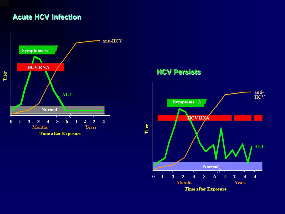 Acute HCV Infection HCV Persists Symptoms +/- Time after Exposure