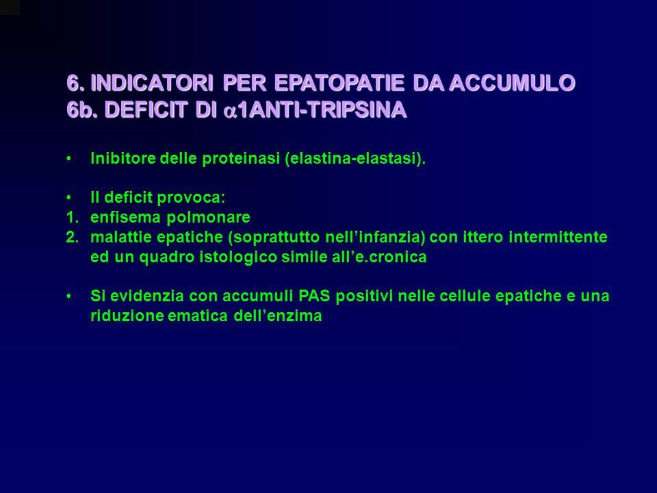 6. INDICATORI PER EPATOPATIE DA ACCUMULO