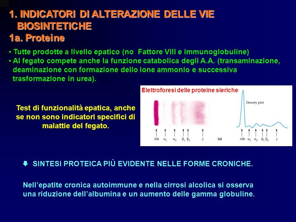 INDICATORI DI ALTERAZIONE DELLE VIE BIOSINTETICHE 1a. Proteine