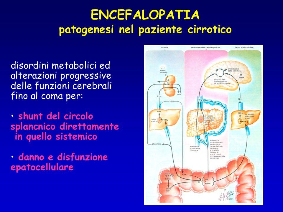 ENCEFALOPATIA patogenesi nel paziente cirrotico
