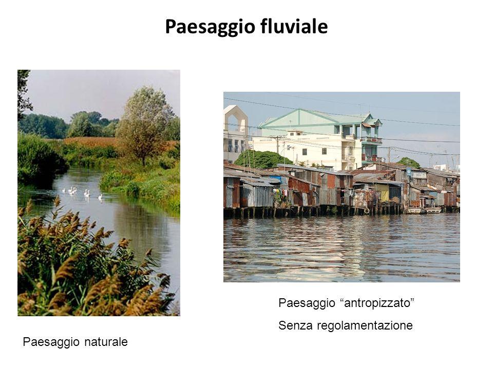 Paesaggio fluviale Paesaggio antropizzato Senza regolamentazione