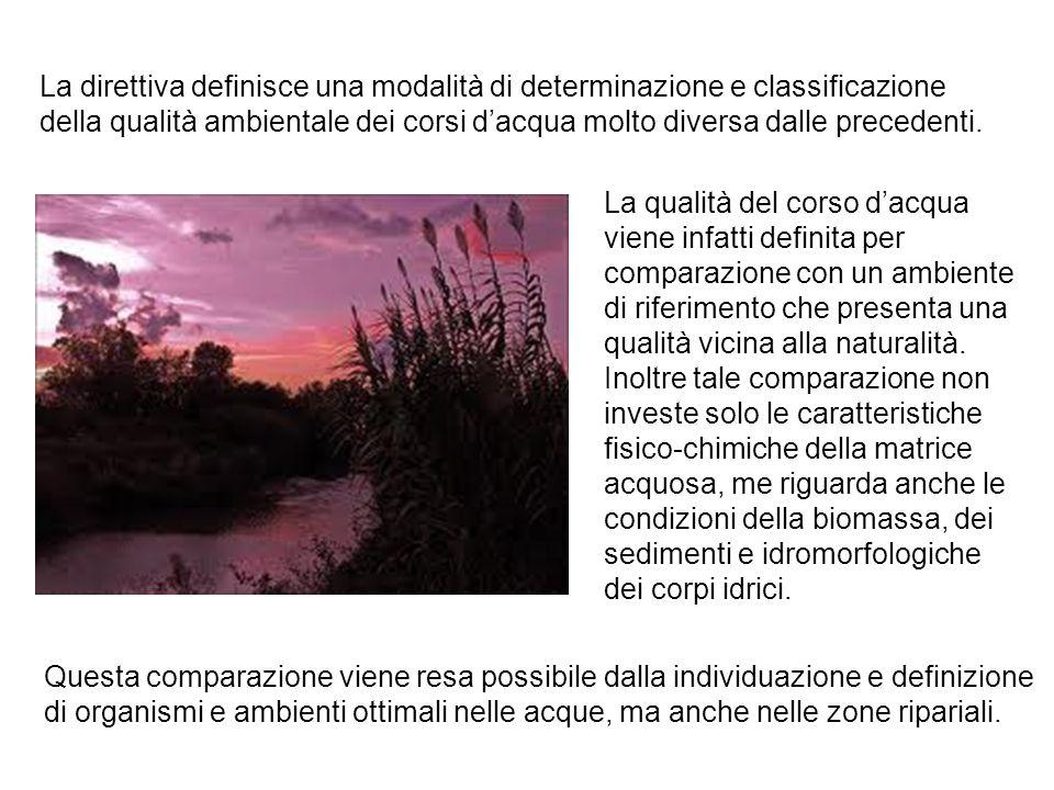 La direttiva definisce una modalità di determinazione e classificazione della qualità ambientale dei corsi d'acqua molto diversa dalle precedenti.