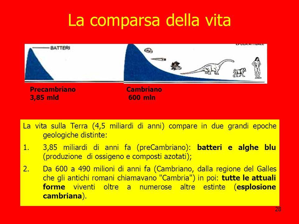 La comparsa della vita Precambriano. 3,85 mld. Cambriano. 600 mln.