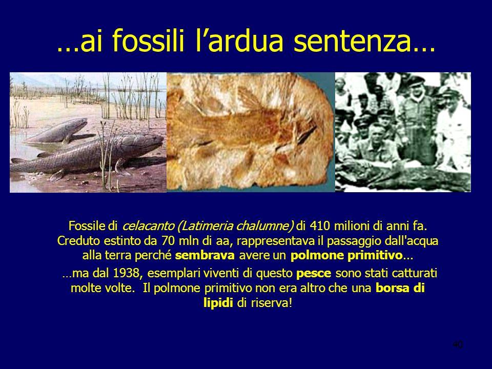 …ai fossili l'ardua sentenza…