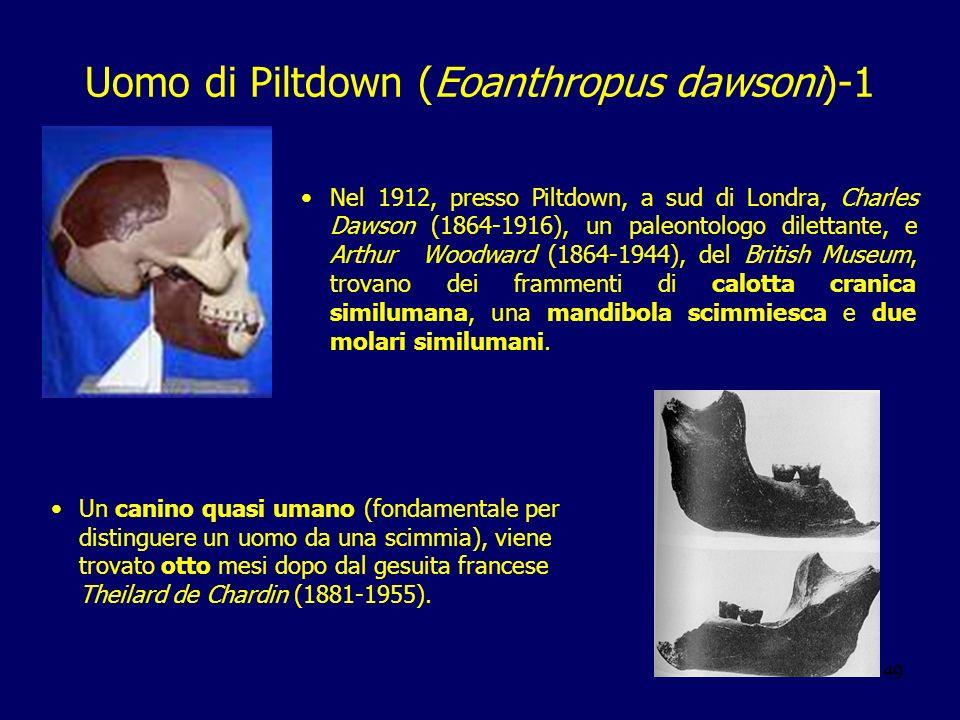 Uomo di Piltdown (Eoanthropus dawsoni)-1