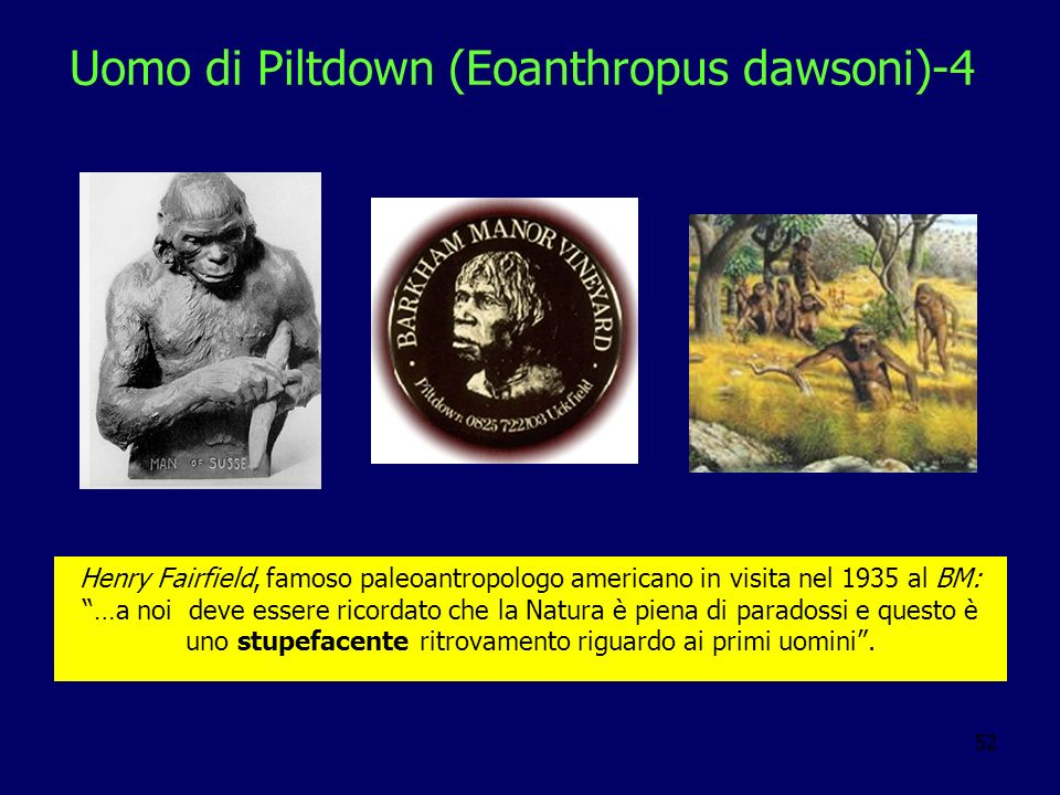 Uomo di Piltdown (Eoanthropus dawsoni)-4