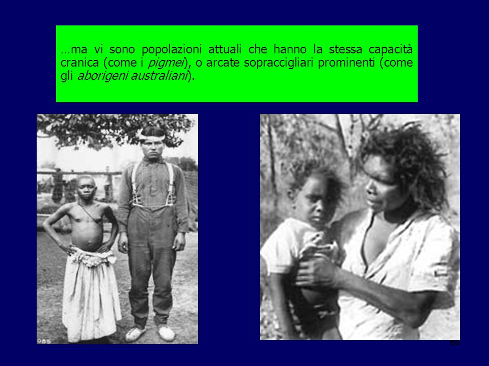 …ma vi sono popolazioni attuali che hanno la stessa capacità cranica (come i pigmei), o arcate sopraccigliari prominenti (come gli aborigeni australiani).