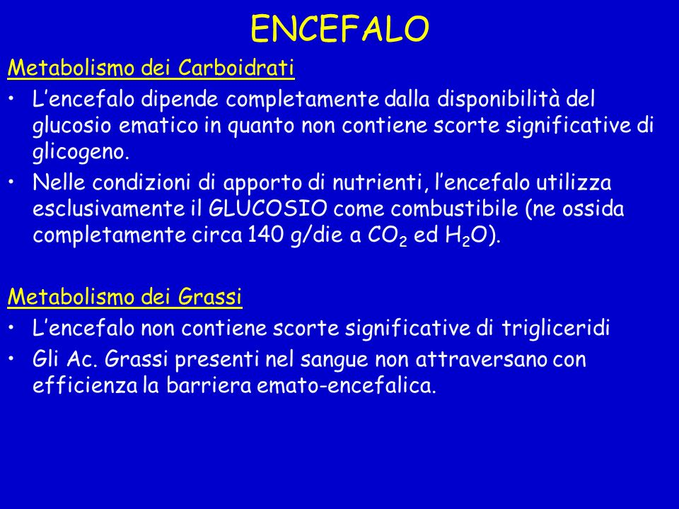 ENCEFALO Metabolismo dei Carboidrati