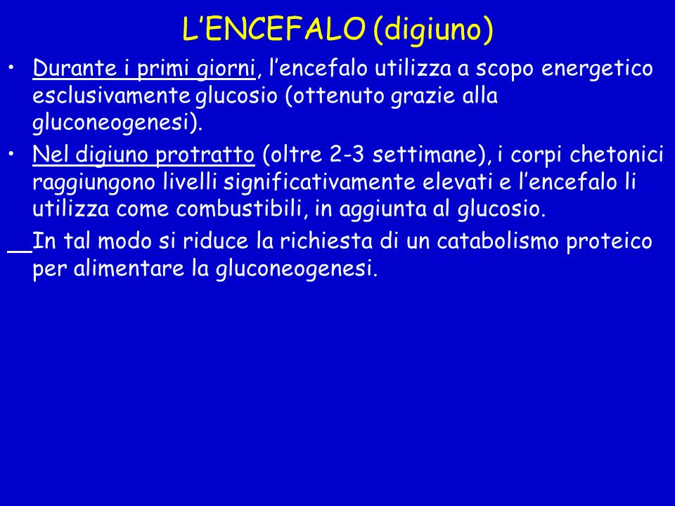 L'ENCEFALO (digiuno) Durante i primi giorni, l'encefalo utilizza a scopo energetico esclusivamente glucosio (ottenuto grazie alla gluconeogenesi).