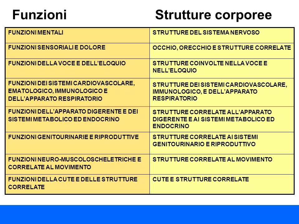 Funzioni Strutture corporee