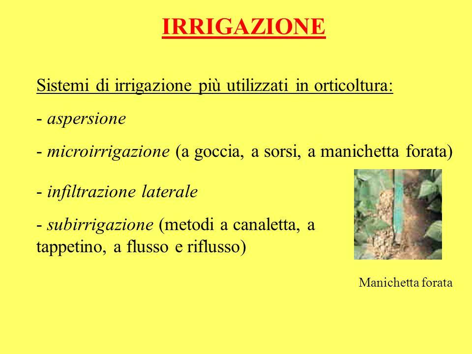 IRRIGAZIONE Sistemi di irrigazione più utilizzati in orticoltura: